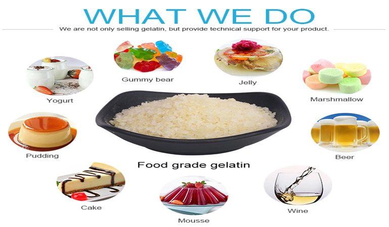 gelatin in food application