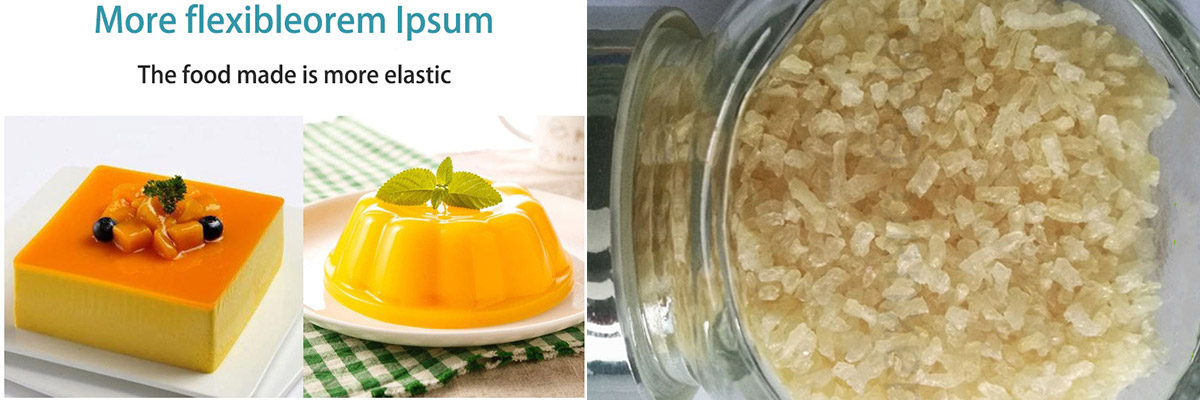 gelatin-food