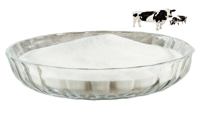 Health benefits of beef collagen