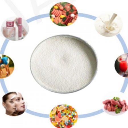 Odorless-porcine-collagen-powder