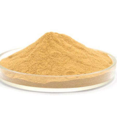 collagen-powder-wholesale