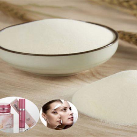 oem-collagen-wholsale